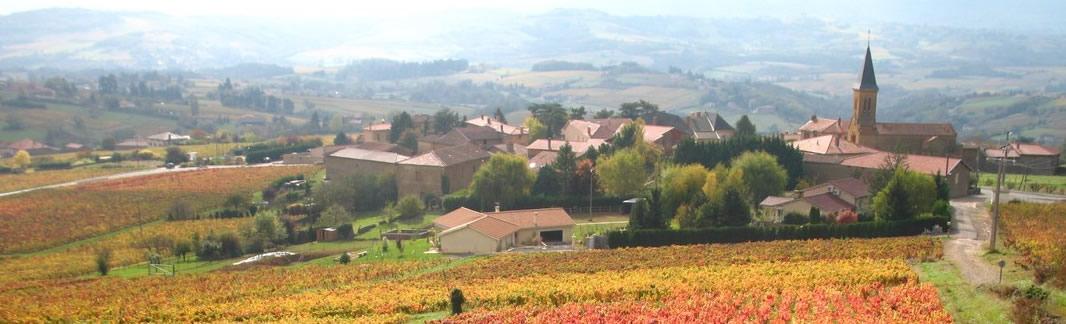 Rando vignoble beaujolais